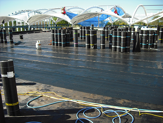 Bituflame Torch On Waterproofing Systems Nz